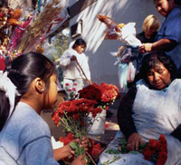 Flower sellers in Argentina