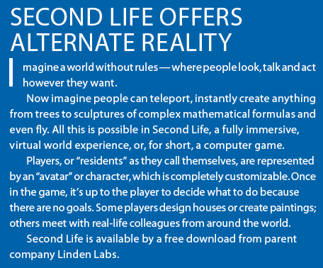 Second Life Synopsis