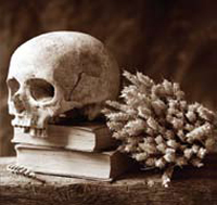 A painting of a human skull resting on two books next to a collection of small flowers