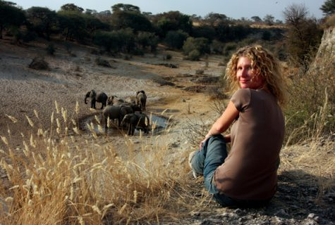 Kelly Crews observes elephants in Botswana.