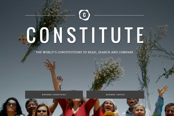 Constitute project website home page with people standing with arms overhead.