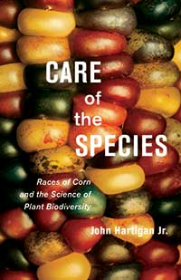 Book cover for Care of the Species: Races of Corn and the Science of Plant Biodiversity.