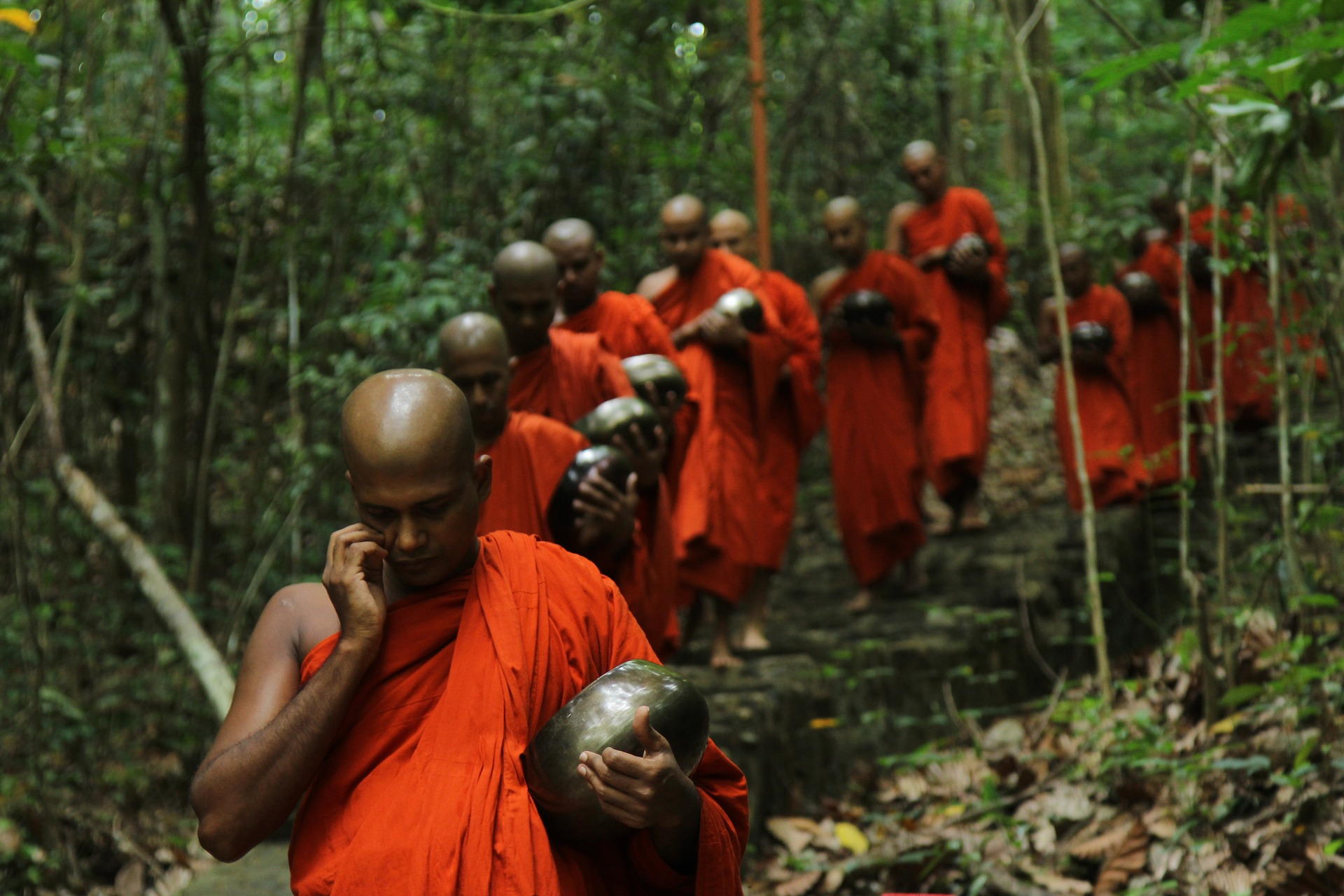 Sadaham Yathra monks walking along a wooden path.