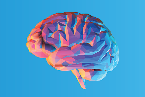 illustration of brain in pink, red and blue.