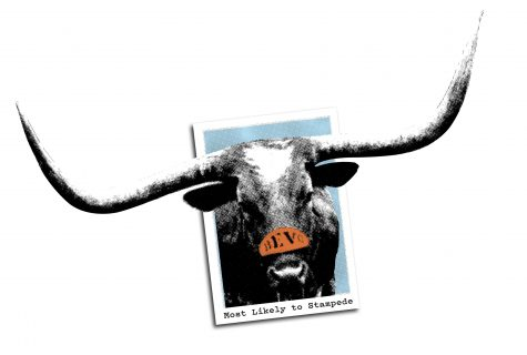 "Illustration of a high school yearbook picture with Bevo . The caption reads, ""Most Likely to Stampede."""