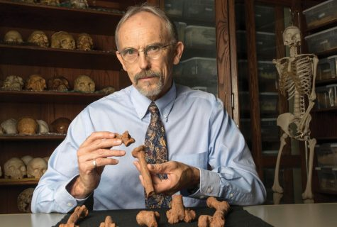 UT Austin professor John Kappelman with 3-D printouts of Lucy's skeleton, illustrating the compressive fractures in her right humerus that she suffered at the time of her death 3.18 million years ago.